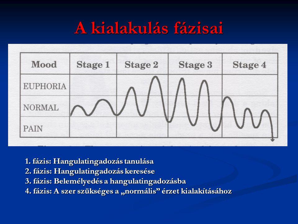 A kialakulás fázisai 1.fázis: Hangulatingadozás tanulása 2.