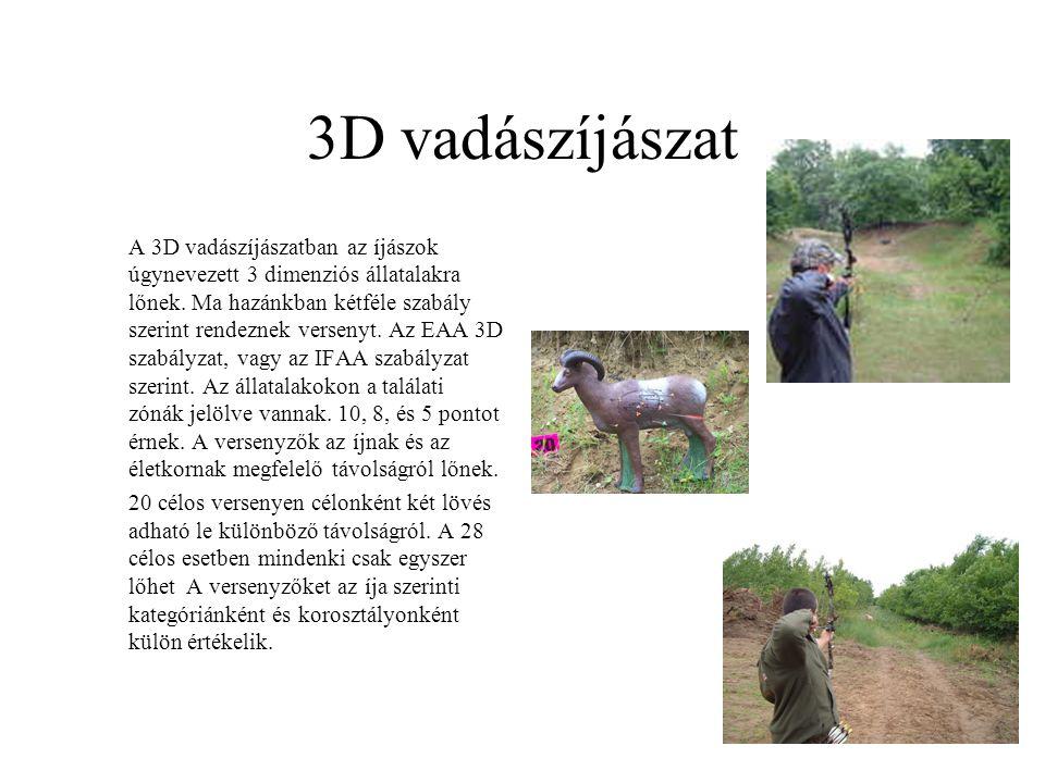 3D vadászíjászat A 3D vadászíjászatban az íjászok úgynevezett 3 dimenziós állatalakra lőnek. Ma hazánkban kétféle szabály szerint rendeznek versenyt.