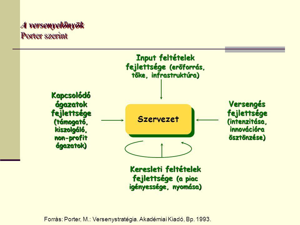 A versenyelőnyök Porter szerint Input feltételek fejlettsége (erőforrás, tőke, infrastruktúra) Szervezet Keresleti feltételek fejlettsége (a piac igényessége, nyomása) Kapcsolódó ágazatok fejlettsége (támogató, kiszolgáló, non-profit ágazatok) Versengés fejlettsége (intenzitása, innovációra ösztönzése) Forrás: Porter, M.: Versenystratégia.