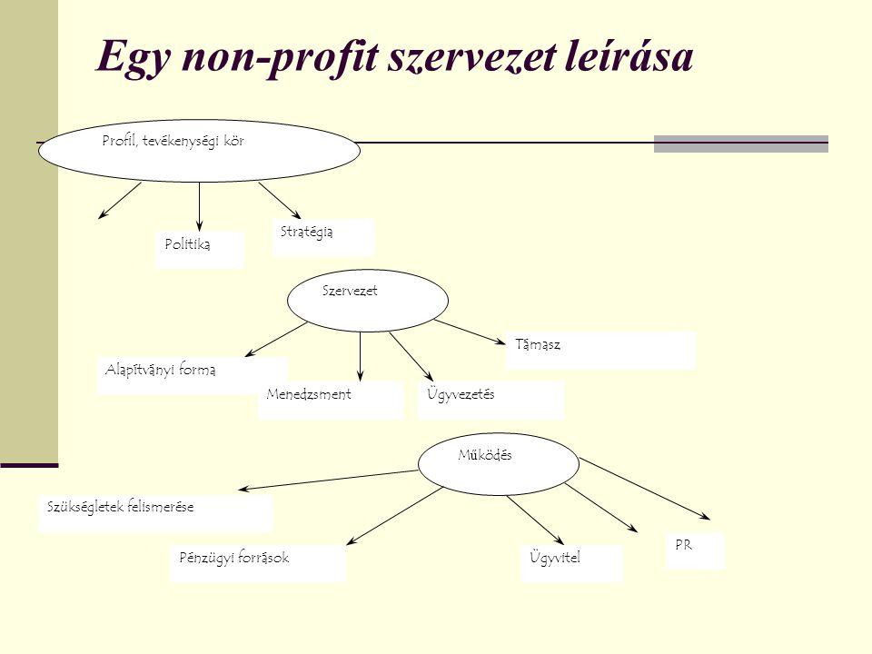 Egy non-profit szervezet leírása Profil, tevékenységi kör Politika Stratégia Szervezet Alapítványi forma MenedzsmentÜgyvezetés Támasz Működés Szükségletek felismerése Pénzügyi forrásokÜgyvitel PR