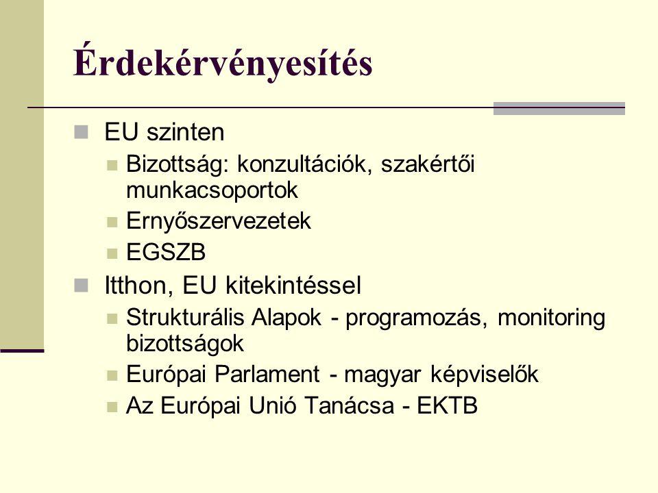 Érdekérvényesítés  EU szinten  Bizottság: konzultációk, szakértői munkacsoportok  Ernyőszervezetek  EGSZB  Itthon, EU kitekintéssel  Strukturális Alapok - programozás, monitoring bizottságok  Európai Parlament - magyar képviselők  Az Európai Unió Tanácsa - EKTB