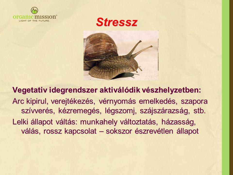 Stressz •vércukorszintben hirtelen változás (alacsony, magas), •hirtelen, jelentős testsúlyváltozás, étvágytalanság vagy fokozott éhségérzet, •vérnyomás problémák (alacsony, magas, ingadozó), •ismétlődő, gyakori megfázások, influenza, egyéb fertőzések, •fokozott türelmetlenség, ingerlékenység, •fáradtság, alvászavar (pl.: fáradt, de nem bír aludni), túlzott fáradtság,
