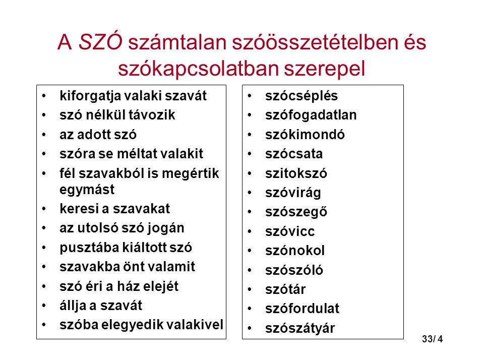 33/ 25 Új magyar szavak tematikus csoportosításban II.