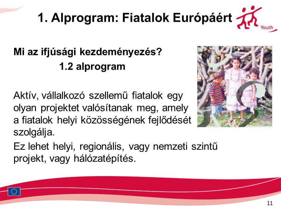 11 1. Alprogram: Fiatalok Európáért Mi az ifjúsági kezdeményezés? 1.2 alprogram Aktív, vállalkozó szellemű fiatalok egy olyan projektet valósítanak me