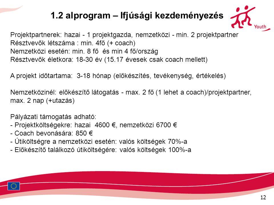 12 1.2 alprogram – Ifjúsági kezdeményezés Projektpartnerek: hazai - 1 projektgazda, nemzetközi - min. 2 projektpartner Résztvevők létszáma : min. 4fő