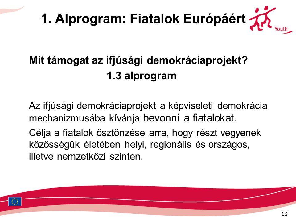 13 1. Alprogram: Fiatalok Európáért Mit támogat az ifjúsági demokráciaprojekt? 1.3 alprogram Az ifjúsági demokráciaprojekt a képviseleti demokrácia me