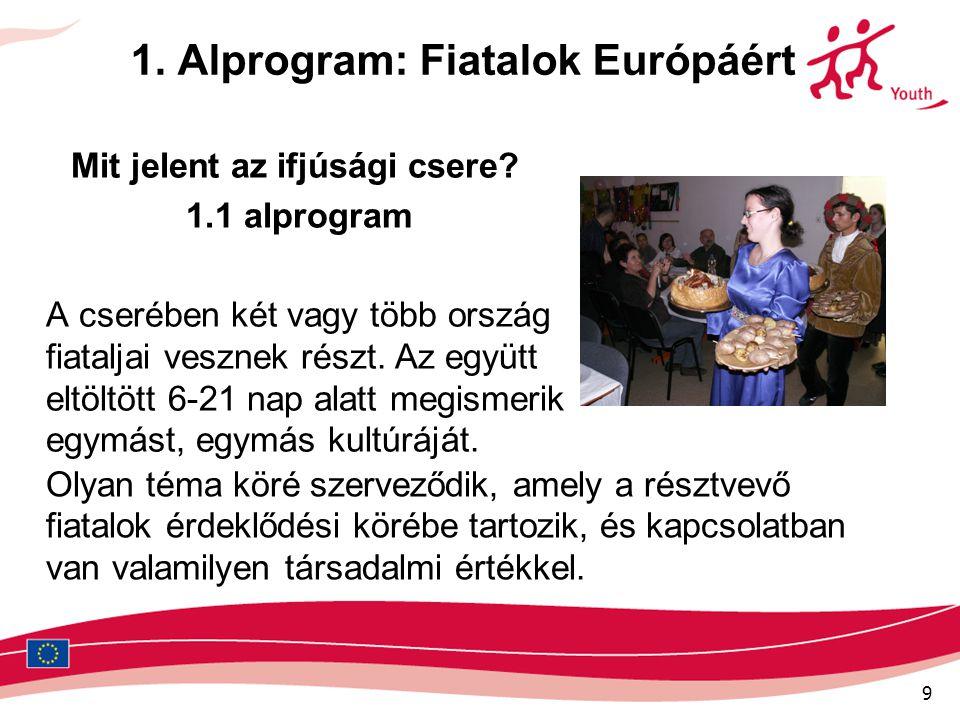 9 1. Alprogram: Fiatalok Európáért Mit jelent az ifjúsági csere? 1.1 alprogram A cserében két vagy több ország fiataljai vesznek részt. Az együtt eltö