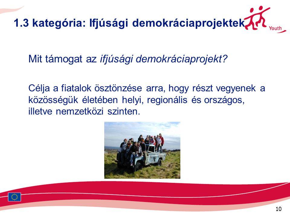 10 1.3 kategória: Ifjúsági demokráciaprojektek Mit támogat az ifjúsági demokráciaprojekt.