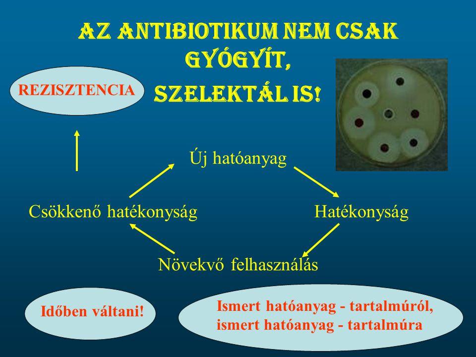 Az antibiotikum nem csak gyógyít, szelektál is! Új hatóanyag Csökkenő hatékonyságHatékonyság Növekvő felhasználás Időben váltani! REZISZTENCIA Ismert
