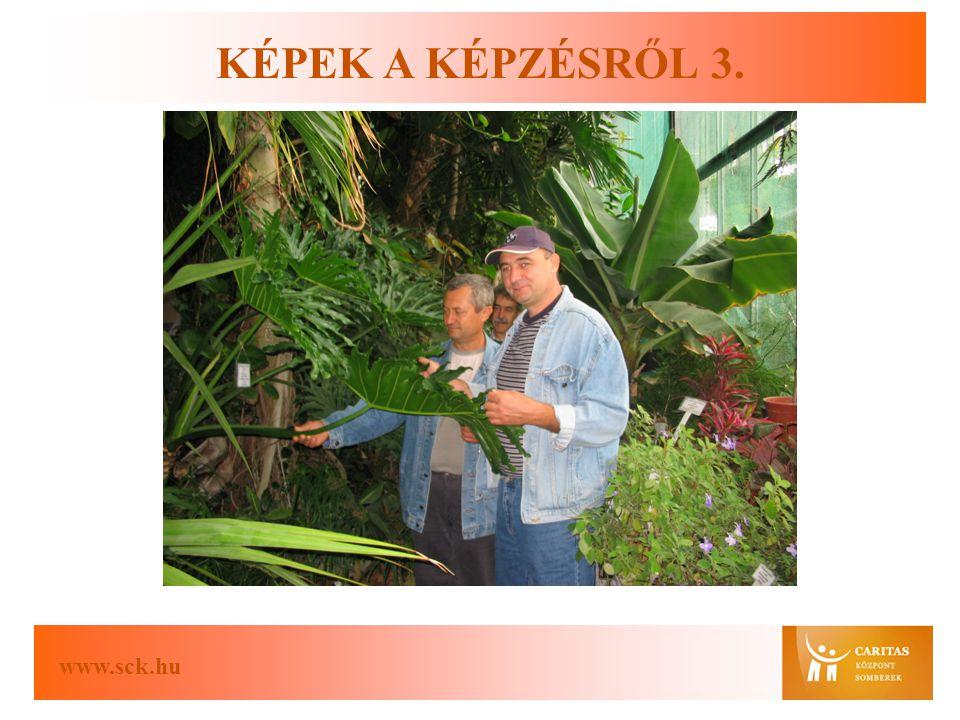 www.sck.hu KÉPEK A KÉPZÉSRŐL 3.