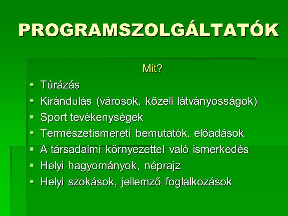 PROGRAMSZOLGÁLTATÓK Mit.