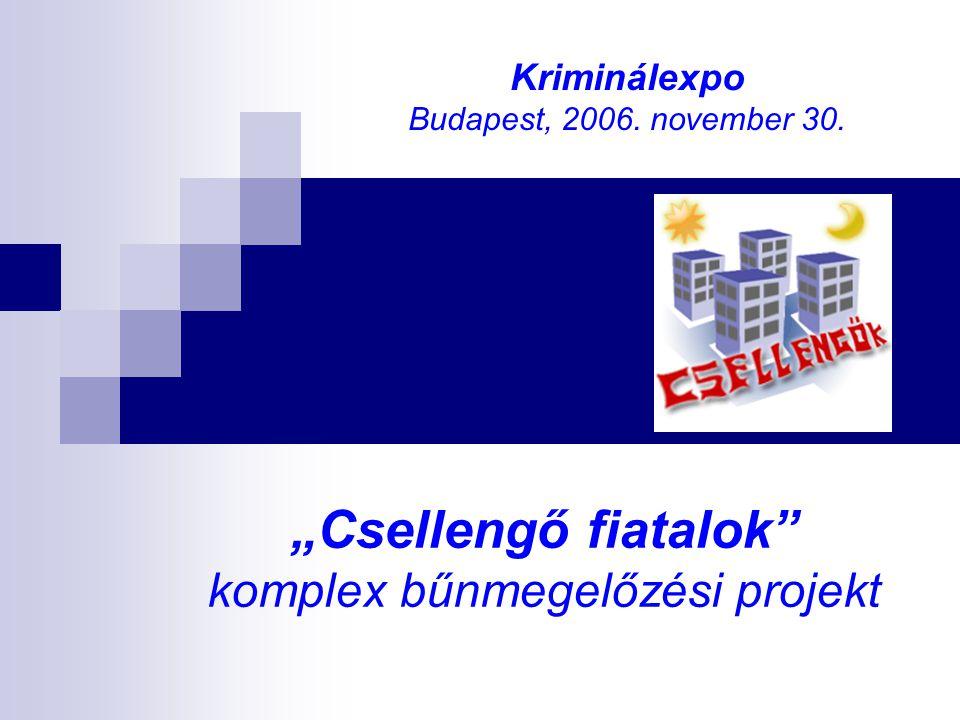 """""""Csellengő fiatalok"""" komplex bűnmegelőzési projekt Kriminálexpo Budapest, 2006. november 30."""