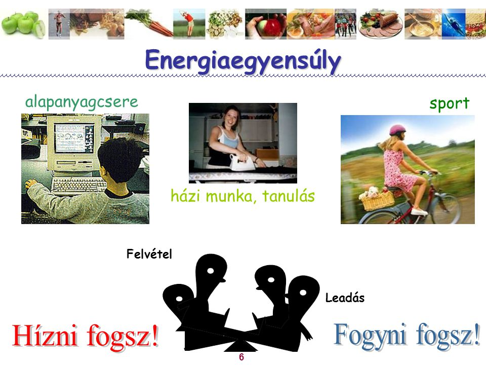 6 Energiaegyensúly alapanyagcsere házi munka, tanulás sport Felvétel Leadás
