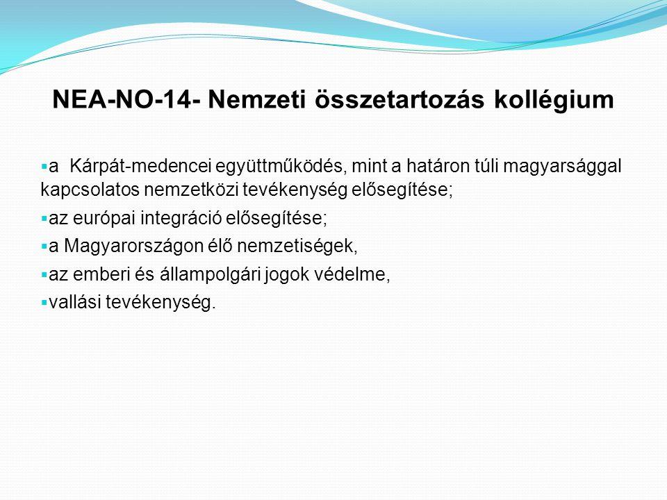 NEA-NO-14- Nemzeti összetartozás kollégium  a Kárpát-medencei együttműködés, mint a határon túli magyarsággal kapcsolatos nemzetközi tevékenység elős