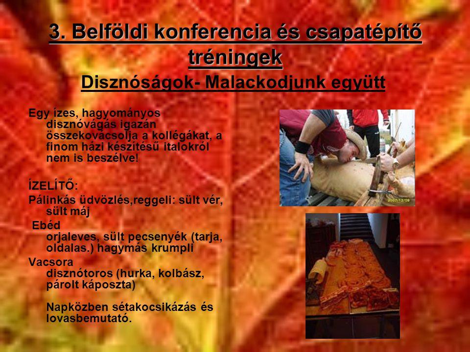 3. Belföldi konferencia és csapatépítő tréningek Egy ízes, hagyományos disznóvágás igazán összekovácsolja a kollégákat, a finom házi készítésű italokr