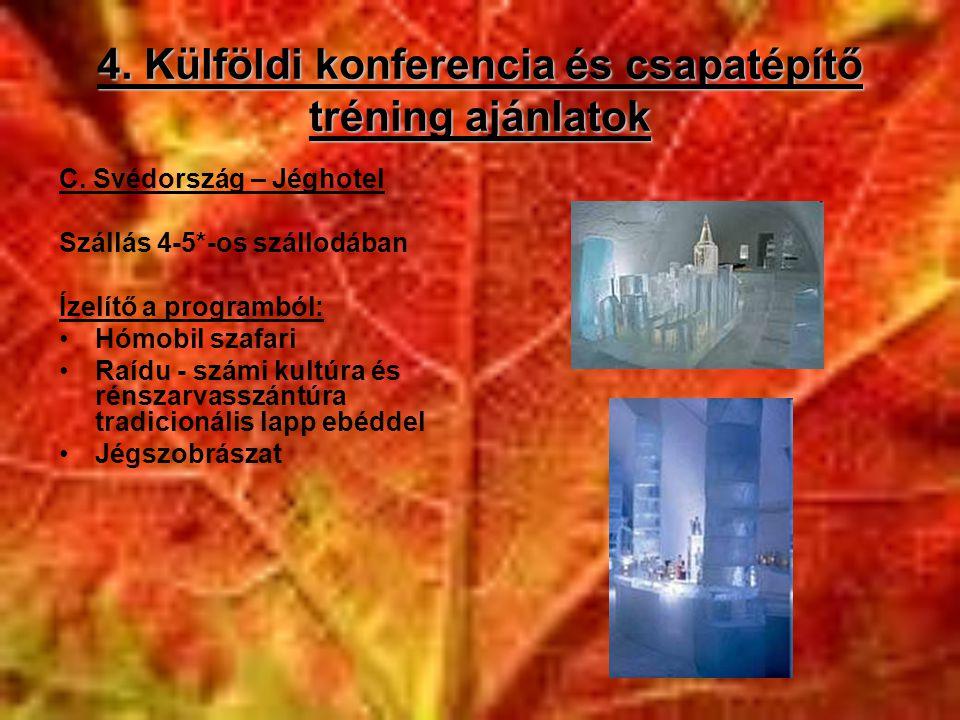 4. Külföldi konferencia és csapatépítő tréning ajánlatok C. Svédország – Jéghotel Szállás 4-5*-os szállodában Ízelítő a programból: •Hómobil szafari •