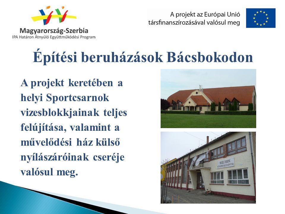 A projekt keretében a helyi Sportcsarnok vizesblokkjainak teljes felújítása, valamint a művelődési ház külső nyílászáróinak cseréje valósul meg. Építé