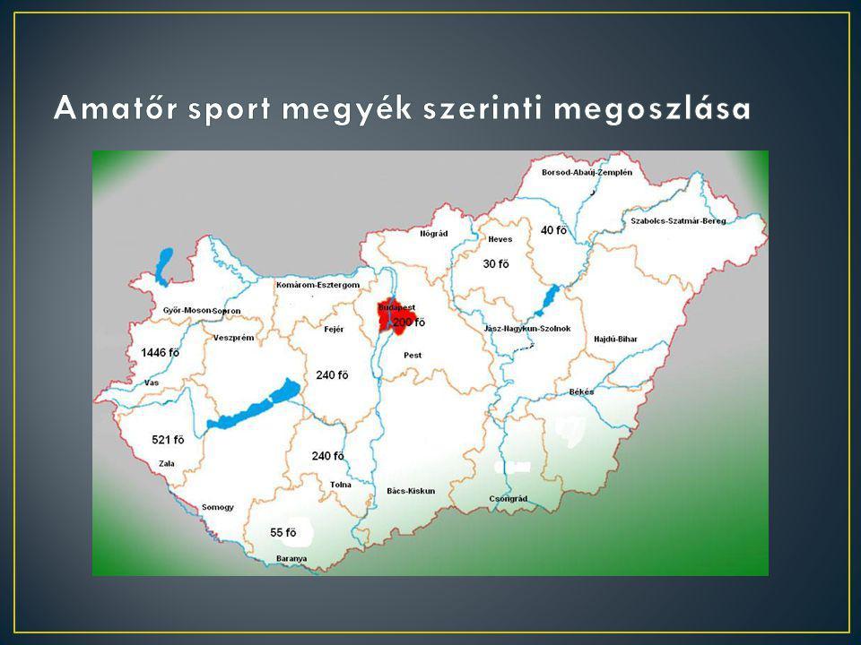 MegyeVersenysport (fő)Amatőr sport(fő) Baranya 62 55 Bács-Kiskun 38 Nincs adat Békés 26 Nincs adat Borsod-Abaúj-Zemplén 57 40 Budapest 619 200 Csongrád 108 Nincs adat /városi bajnokság/ Fejér 44 240 Győr-Moson-Sopron 560 Nincs adat Hajdú-Bihar 24 Nincs adat Heves 50 30 Jász-Nagykun-Szolnok 49Nincs adat Komárom-Esztergom 64 Nincs adat Nógrád 98 Nincs adat Pest 26 Nincs adat Somogy 51 Nincs adat Szabolcs-Szatmár-Bereg 35 Nincs adat Tolna 23 240 Vas 5431446 Veszprém 136Nincs adat Zala 299 521 Összesen29122772