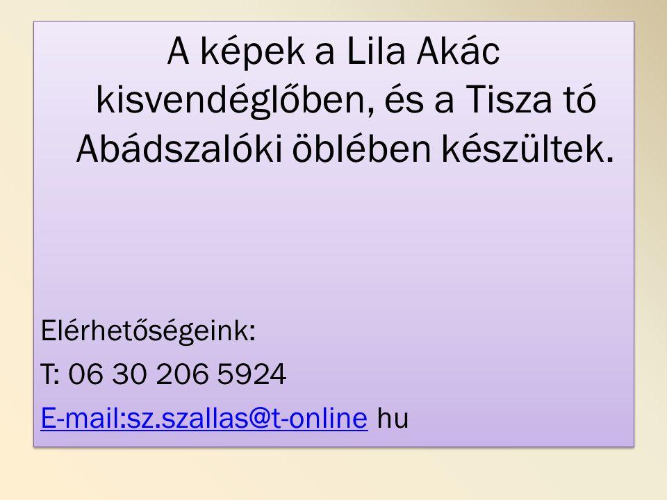 A képek a Lila Akác kisvendéglőben, és a Tisza tó Abádszalóki öblében készültek.
