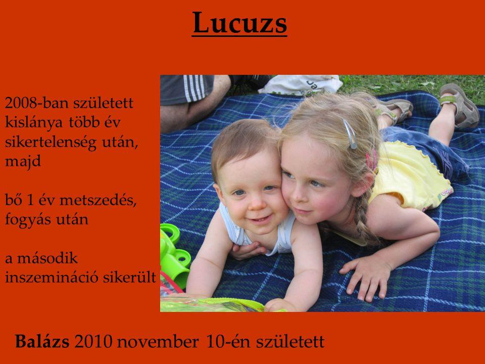 2008-ban született kislánya több év sikertelenség után, majd bő 1 év metszedés, fogyás után a második inszemináció sikerült Lucuzs Balázs 2010 novembe
