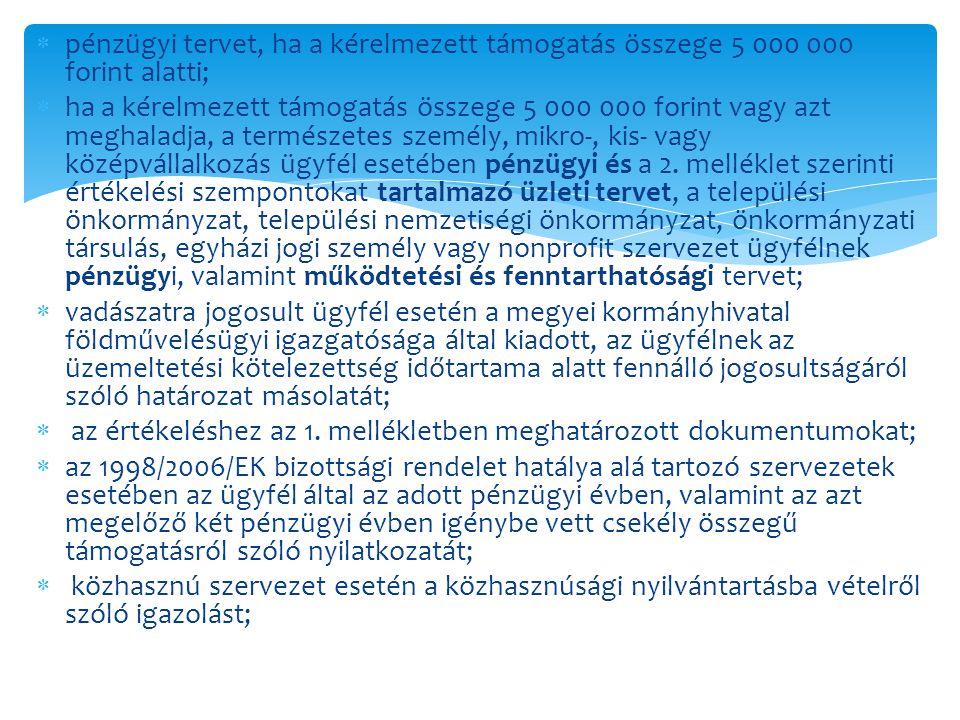  pénzügyi tervet, ha a kérelmezett támogatás összege 5 000 000 forint alatti;  ha a kérelmezett támogatás összege 5 000 000 forint vagy azt meghalad