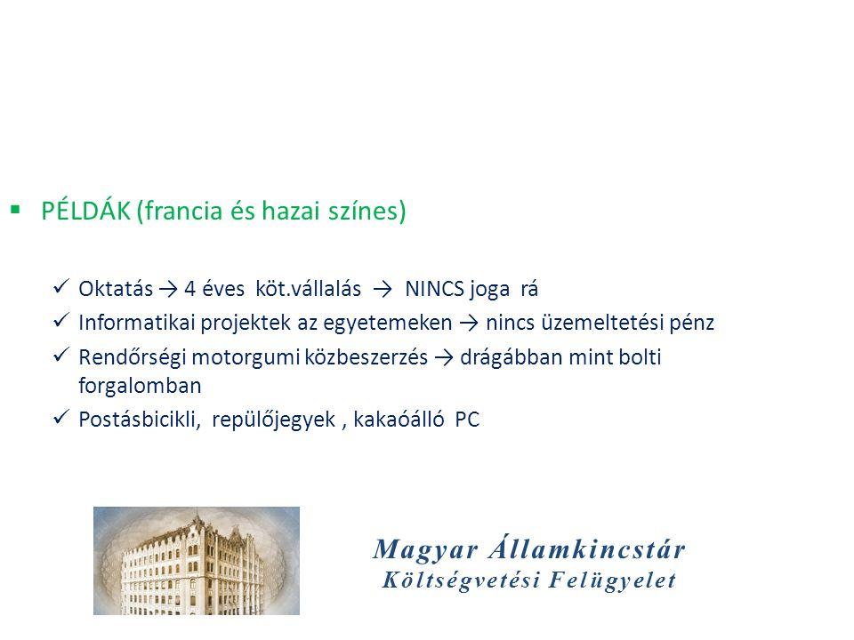 Magyar Államkincstár Költségvetési Felügyelet  PÉLDÁK (francia és hazai színes)  Oktatás → 4 éves köt.vállalás → NINCS joga rá  Informatikai projek