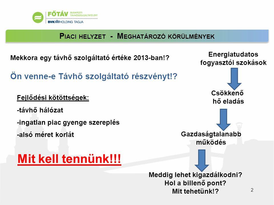 P IACI HELYZET - M EGHATÁROZÓ KÖRÜLMÉNYEK 2 Mekkora egy távhő szolgáltató értéke 2013-ban!.