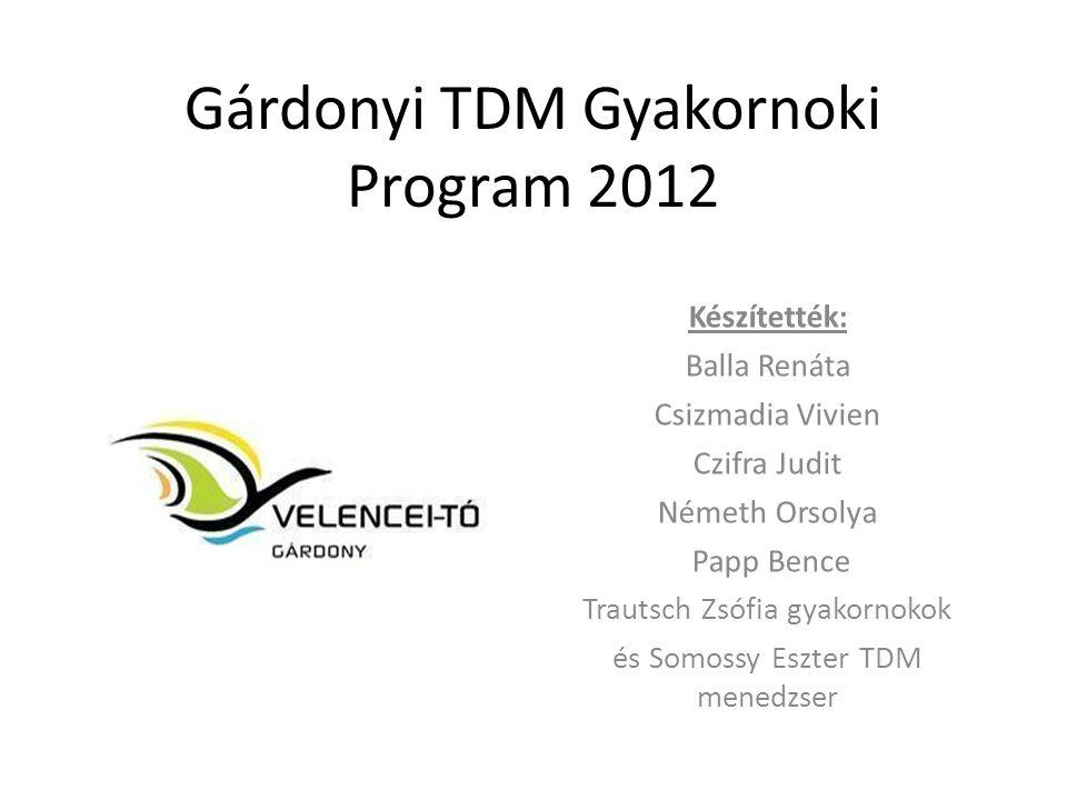 Gárdonyi TDM Gyakornoki Program 2012 Készítették: Balla Renáta Csizmadia Vivien Czifra Judit Németh Orsolya Papp Bence Trautsch Zsófia gyakornokok és