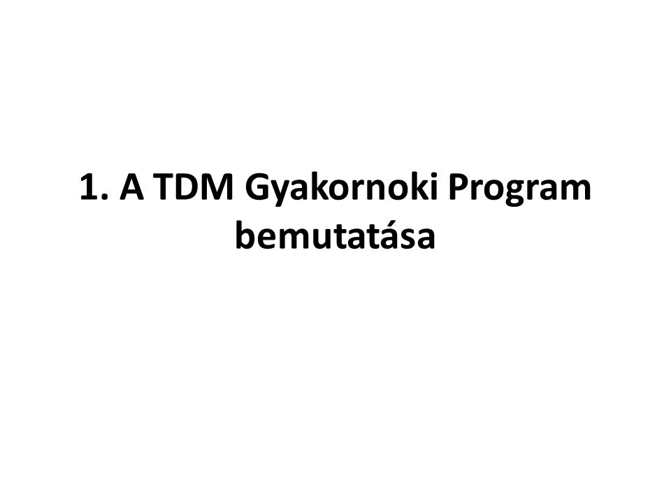 1. A TDM Gyakornoki Program bemutatása