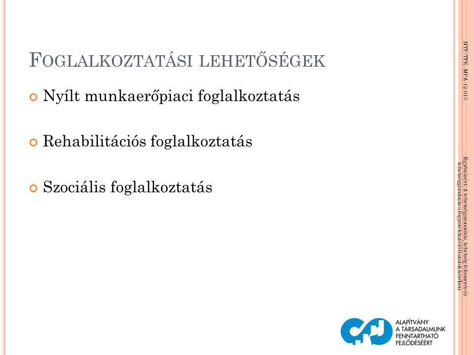 NTP-TFK- MPA-12-013 Egy/másért: A tehetségazonosítás, tehetség felismerés és tehetséggondozás a fogyatékkal élő fiatalok körében F OGLALKOZTATÁSI LEHE