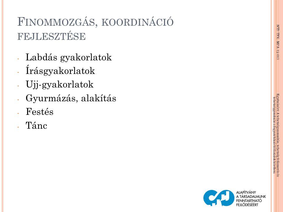 NTP-TFK- MPA-12-013 Egy/másért: A tehetségazonosítás, tehetség felismerés és tehetséggondozás a fogyatékkal élő fiatalok körében F INOMMOZGÁS, KOORDIN