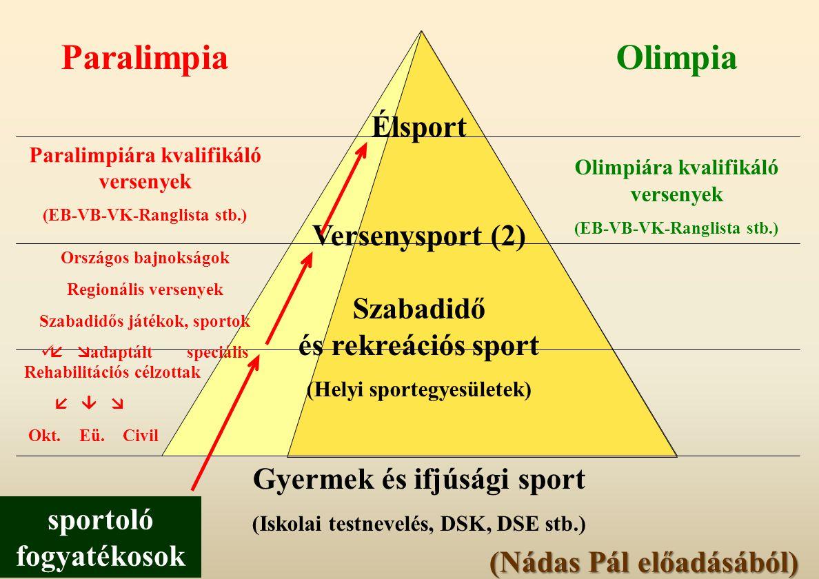 Élsport Versenysport (2) Szabadidő és rekreációs sport (Helyi sportegyesületek) Gyermek és ifjúsági sport (Iskolai testnevelés, DSK, DSE stb.) Olimpia