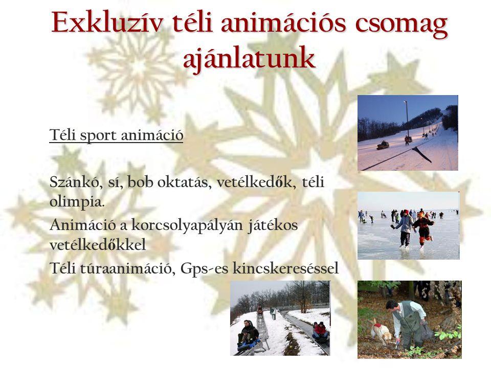 Exkluzív téli animációs csomag ajánlatunk Téli sport animáció Szánkó, sí, bob oktatás, vetélked ő k, téli olimpia. Animáció a korcsolyapályán játékos