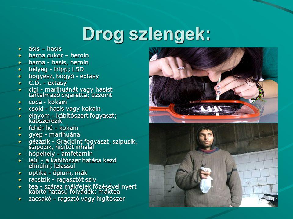 Drog szlengek: ásis – hasis barna cukor – heroin barna - hasis, heroin barna - hasis, heroin bélyeg - tripp; LSD bélyeg - tripp; LSD bogyesz, bogyó -