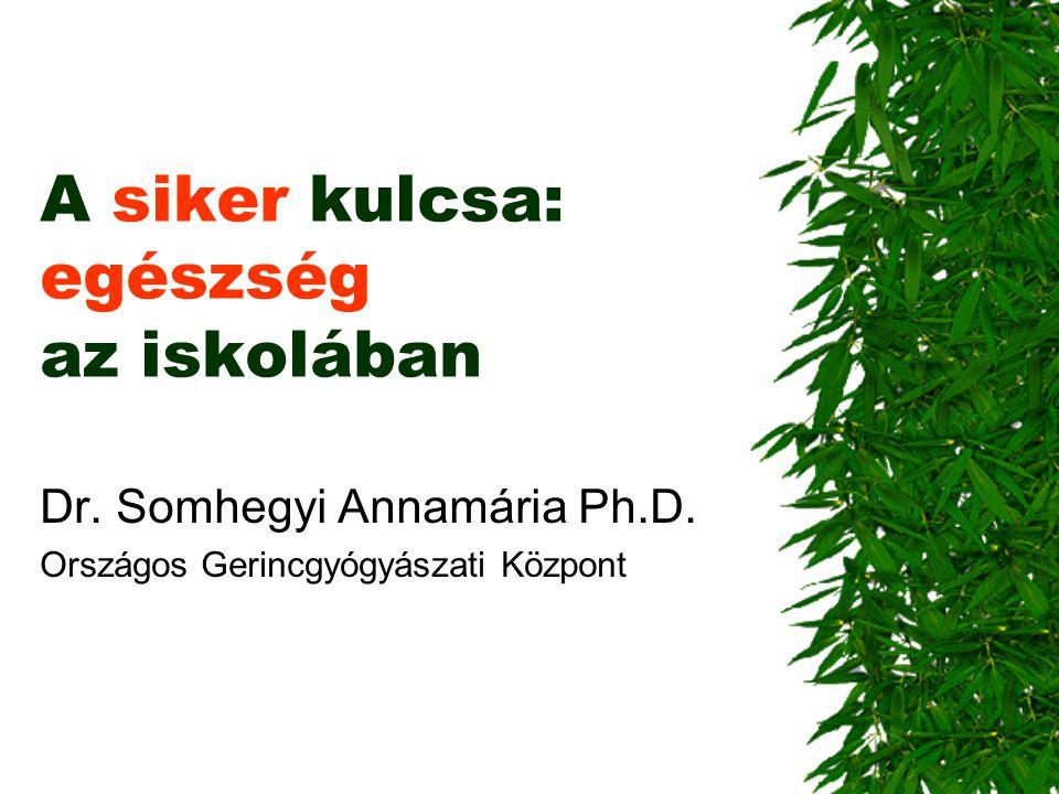 A siker kulcsa: egészség az iskolában Dr. Somhegyi Annamária Ph.D. Országos Gerincgyógyászati Központ