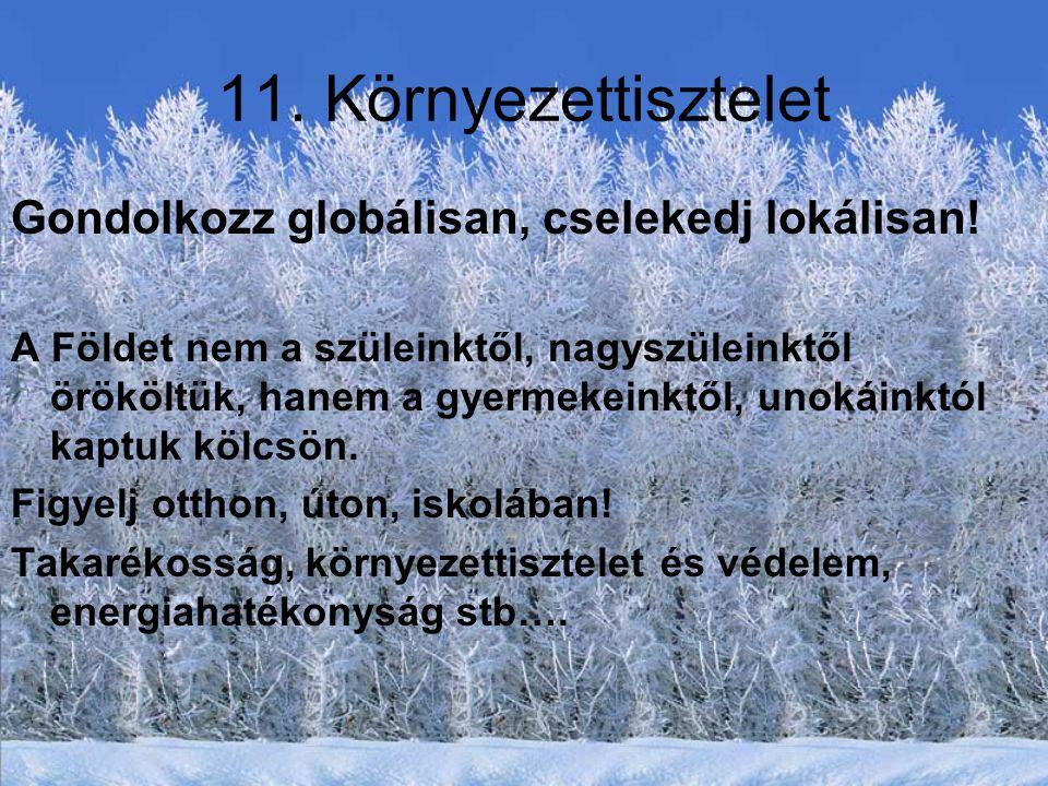11.Környezettisztelet Gondolkozz globálisan, cselekedj lokálisan.