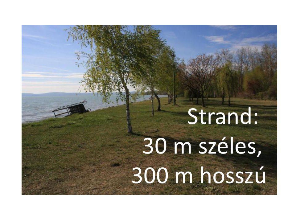 Strand: 30 m széles, 300 m hosszú