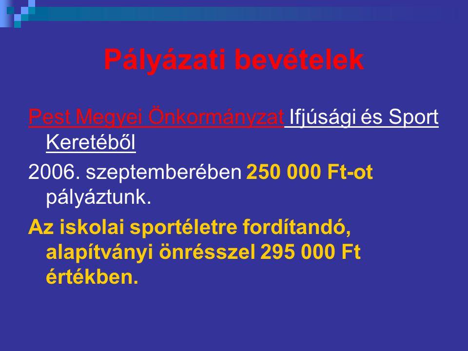 Pályázati bevételek Pest Megyei Önkormányzat Ifjúsági és Sport Keretéből 2006. szeptemberében 250 000 Ft-ot pályáztunk. Az iskolai sportéletre fordíta