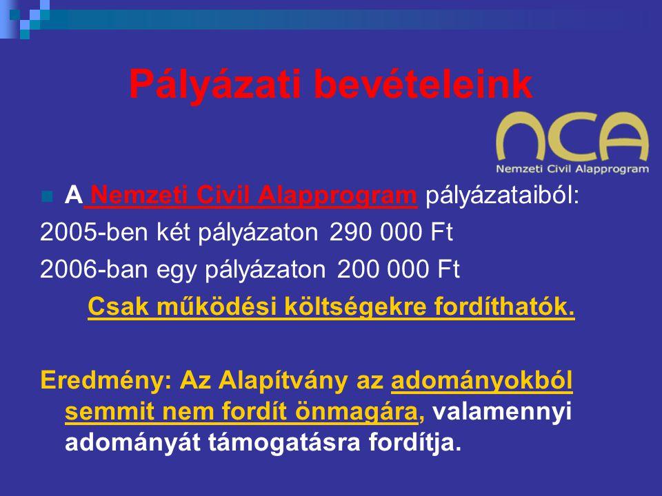 Pályázati bevételeink  A Nemzeti Civil Alapprogram pályázataiból: 2005-ben két pályázaton 290 000 Ft 2006-ban egy pályázaton 200 000 Ft Csak működési költségekre fordíthatók.