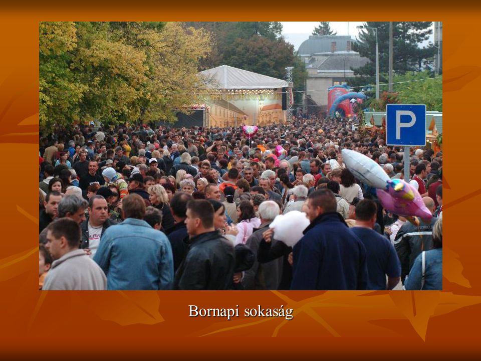 Bornapi sokaság