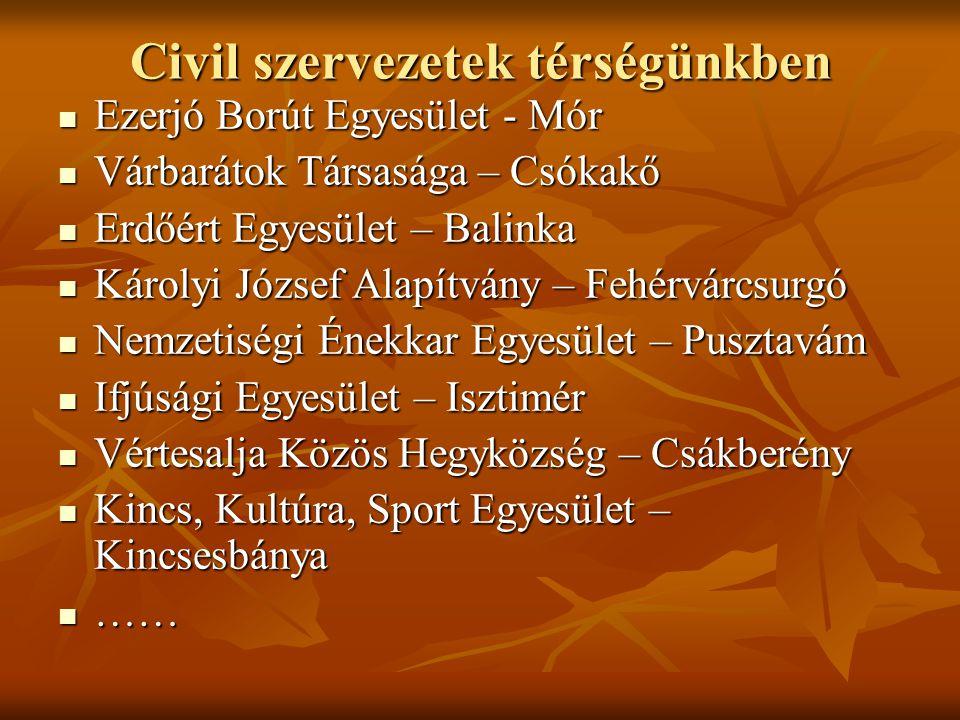 Civil szervezetek térségünkben  Ezerjó Borút Egyesület - Mór  Várbarátok Társasága – Csókakő  Erdőért Egyesület – Balinka  Károlyi József Alapítvá