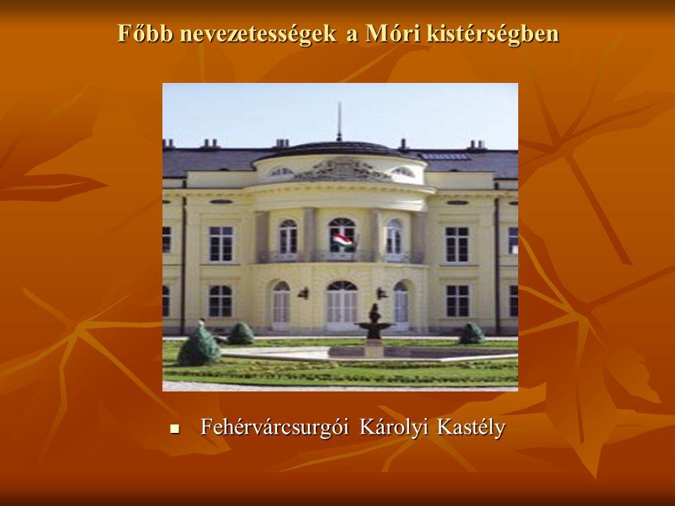 Főbb nevezetességek a Móri kistérségben  Fehérvárcsurgói Károlyi Kastély