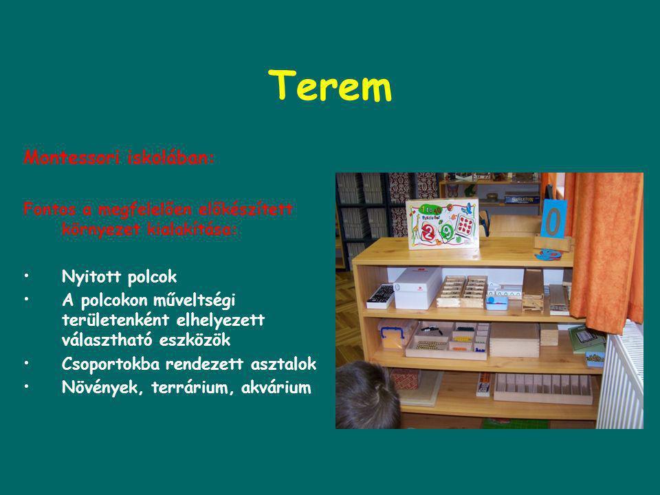 Terem Montessori iskolában: Fontos a megfelelően előkészített környezet kialakítása: •Nyitott polcok •A polcokon műveltségi területenként elhelyezett választható eszközök •Csoportokba rendezett asztalok •Növények, terrárium, akvárium