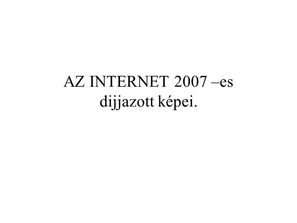 AZ INTERNET 2007 –es dijjazott képei.