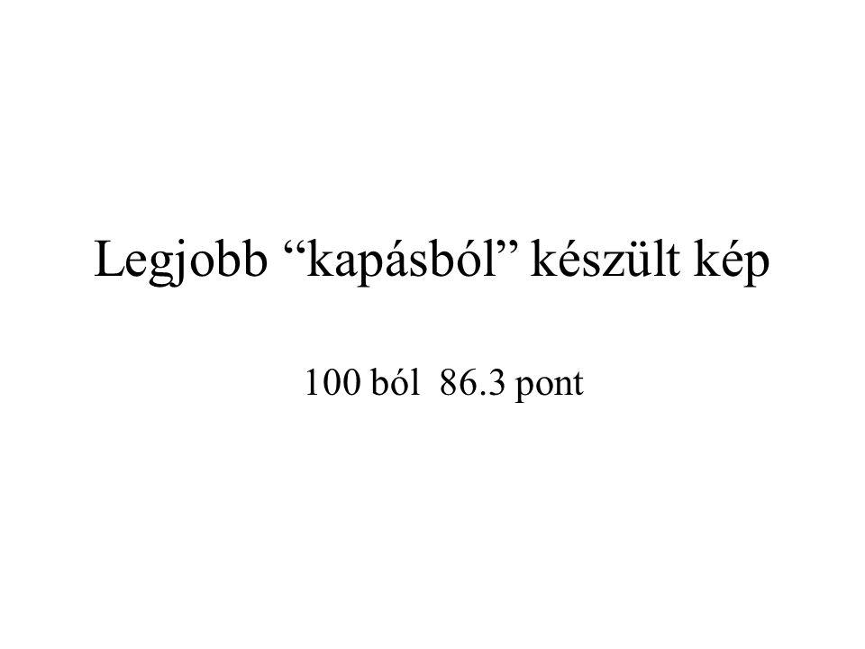 Legjobb kapásból készült kép 100 ból 86.3 pont