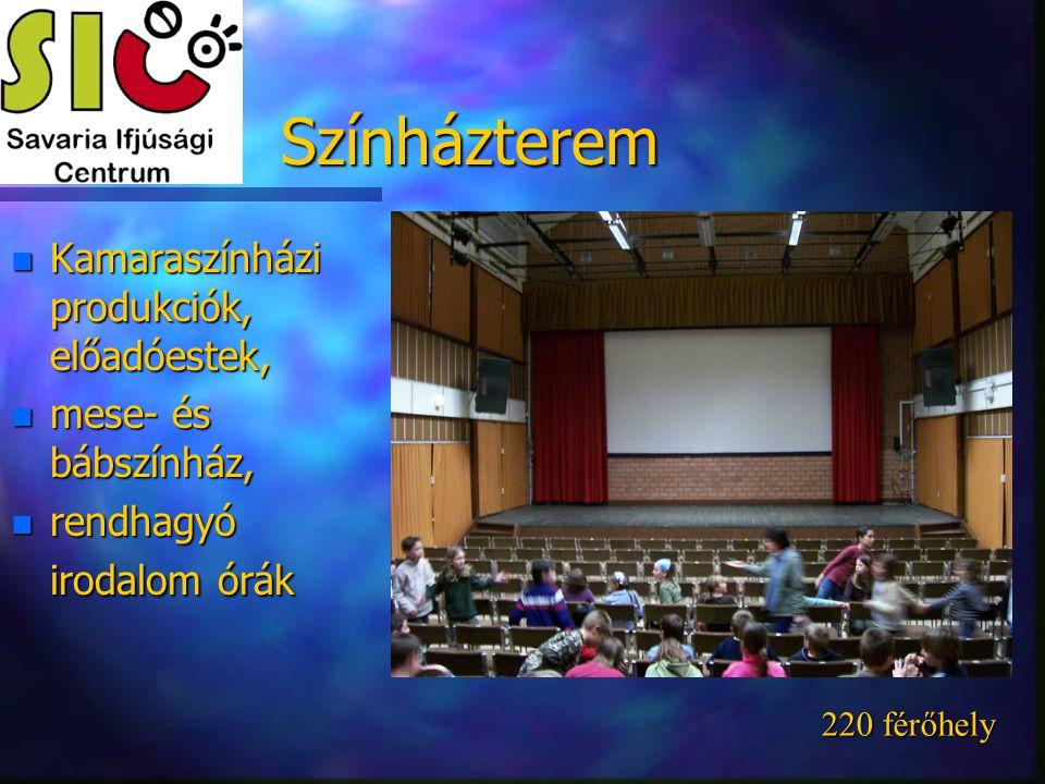 Színházterem n Kamaraszínházi produkciók, előadóestek, n mese- és bábszínház, n rendhagyó irodalom órák 220 férőhely