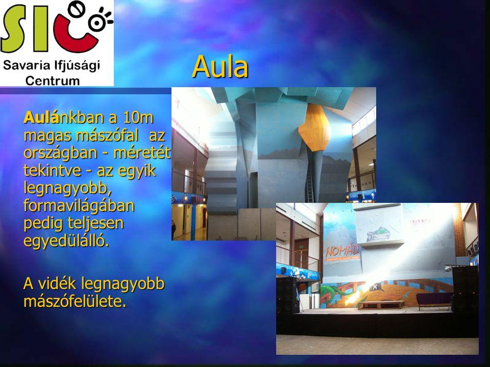 Aula Aulánkban a 10m magas mászófal az országban - méretét tekintve - az egyik legnagyobb, formavilágában pedig teljesen egyedülálló.