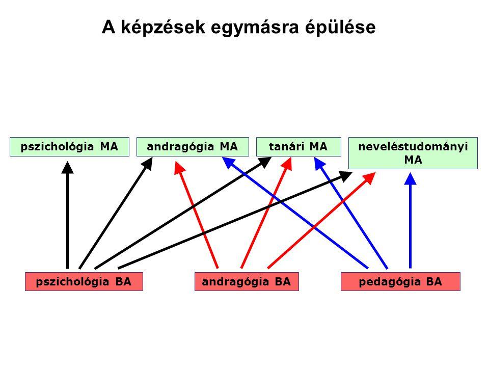 A képzések egymásra épülése pszichológia BAandragógia BApedagógia BA pszichológia MAandragógia MAneveléstudományi MA tanári MA