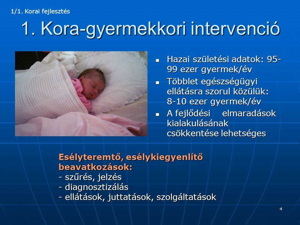 5 A korai intervenció tartalma  Szűrés/jelzés, szűrővizsgálatok: újszülött osztályok, intenzív centrumok (PIC, NIC), házi gyermekorvosok, védőnők, bölcsődék, óvónők  Személyes szolgáltatások: családsegítés, tanácsadás, otthoni szakápolás  Természetbeni és pénzbeli juttatások: ápolási díj, útiköltségtérítés, gyermekétkeztetés  Korai fejlesztést végző intézmények: korai fejlesztő központok, ápoló-gondozó otthonok, bölcsődék, más intézmények 1/2.