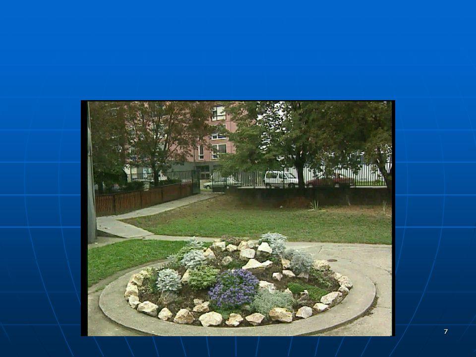 38 Jelnyelvi tolmácsok A jelnyelv alkalmazása: - hivatalos ügyek intézése (bíróság, önkormányzat, rendőrség, adóhivatal) - tanulmányok folytatása (felvételi jelentkezés, vizsga, könyvtár) - kórház, orvos, mentő - rendezvényeken (konferencia, továbbképzés) részvétel - családi események - tömegkommunikáció 6/4.